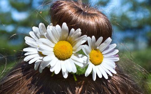 丸子头与辫子的完美结合