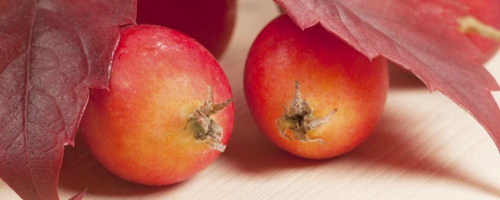 孕妇吃水果要注意什么 要根据体质选择