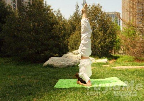 这五步让你不再害怕瑜伽倒立