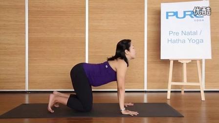 【瑜米之伽】之孕妇瑜伽讲解_高清