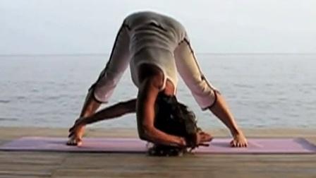 【瑜米之伽】阿奴萨拉-15分钟瑜伽体式练习经典高清版