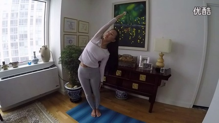 【Kriya瑜伽·初级体式教程】单臂风吹树式