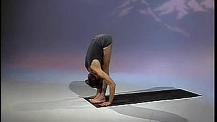 Richard freeman ashtanga yoga 教学录像 1/2